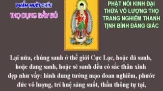Kinh Vô Lượng Thọ - Thích Trí Thoát