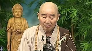 Tập 088 - (HQ) Kinh Đại Thừa Vô Lượng Thọ - Pháp sư Tịnh Không chủ giảng -  cẩn dịch cư sĩ Vọng Tây