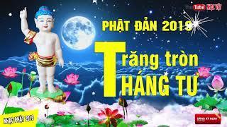 Nhạc Phật Giáo 2019 KHÔNG QUẢNG CÁO - Lễ Phật Đản 2019