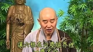 Tập 114 - (HQ) Kinh Đại Thừa Vô Lượng Thọ - Pháp sư Tịnh Không chủ giảng -  cẩn dịch cư sĩ Vọng Tây