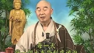 Tập 061 - (HQ) Kinh Đại Thừa Vô Lượng Thọ - Pháp sư Tịnh Không chủ giảng -  cẩn dịch cư sĩ Vọng Tây