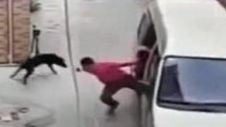 Đi ô tô trộm chó l Tổng hợp những pha câu trộm chó cực kì manh động l Cẩu tặc trộm chó 2015