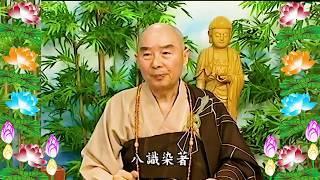 Kinh Đại Phương Quảng Phật Hoa Nghiêm, tập 0123