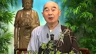 Tập 165 - (HQ) Kinh Đại Thừa Vô Lượng Thọ - Pháp sư Tịnh Không chủ giảng - cẩn dịch cư sĩ Vọng Tây