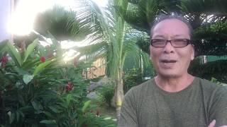 HIỆN TÌNH ĐẤT NƯỚC NGÀY 5/12/2019 .  BÁO ĐỘNG VN, 7 TỈNH PHÍA BẮC