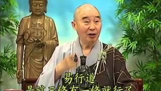 Tập 174 - (HQ) Kinh Đại Thừa Vô Lượng Thọ - Pháp sư Tịnh Không chủ giảng - cẩn dịch cư sĩ Vọng Tây