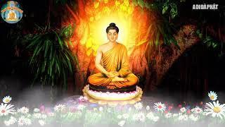 Phật Dạy Đừng KHÓC vì cuộc đời bạn ĐAU KHổ  Nhân quả số mệnh con người Do đâu nghe lời phật dậy