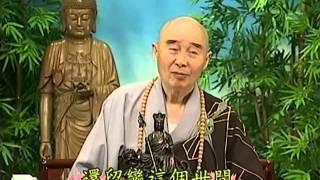 Tập 146 - (HQ) Kinh Đại Thừa Vô Lượng Thọ - Pháp sư Tịnh Không chủ giảng -  cẩn dịch cư sĩ Vọng Tây