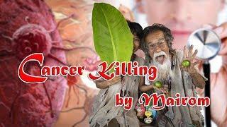 Cancer Killing by Mairom Thammachati-asoka | ไม้ร่มปราบมะเร็ง Version ภาษาสากล