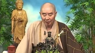 Tập 046 - (HQ) Kinh Đại Thừa Vô Lượng Thọ - Pháp sư Tịnh Không chủ giảng -  cẩn dịch cư sĩ Vọng Tây