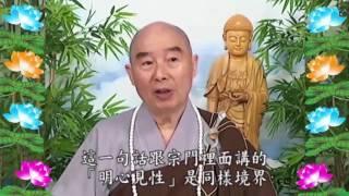 Kinh Đại Phương Quảng Phật Hoa Nghiêm, tập 0320
