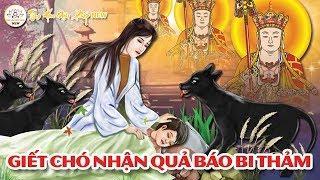 NGHIỆP CHƯỚNG KINH HOÀNG CỦA NGHỀ GIẾT MỔ CHÓ... Nhận Lấy Kết Cuộc Bi Thảm | Nhân Quả Phật Giáo