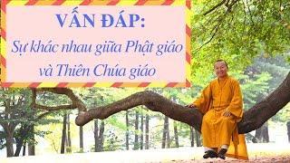 Vấn đáp: Sự khác nhau giữa Phật giáo và Thiên Chúa giáo | Thích Nhật Từ
