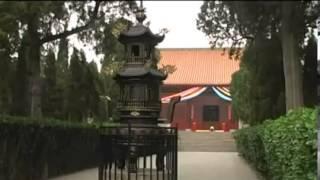 Niệm Phật Chữa Khỏi Ung Thư - Phim Tài Liệu Truyền Hình | phongluuqb.com