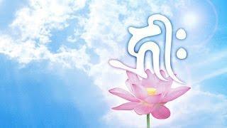 Thần Chú OM - Khai mở Luân xa số 7 ✔ Mở mang tâm thức, yêu thương và từ bi, đưa đến sự Giác ngộ.
