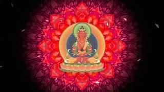 Đức Phật Vô Lượng Thọ (mật tông ) ☆ Amitayus Buddha Long mantra ☆