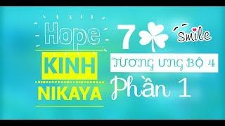 KINH TƯƠNG ƯNG BỘ 4 Phần 1 (Kinh Nguyên Thuỷ) (Nikaya 1080HD)