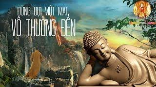 Đừng Đợi Một Mai Vô Thường Đến - Nghe Lời Phật Dạy Để Bình An Tâm Hồn - #Mới Nhất